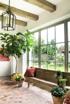 LayeredLiving: Fiddle Leaf! Style At Home, Interior And Exterior, Interior Design, Interior Ideas, Interior Plants, Modern Exterior, Growing Plants Indoors, Spanish Style, Spanish Colonial