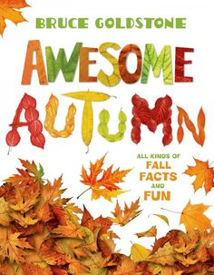 awesome autumn - a b