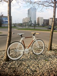 Stylish fixed gear bicycle