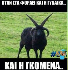 Funny Status Quotes, Funny Greek Quotes, Funny Statuses, Kai, Funny Times, Clever Quotes, Sarcasm Humor, Just Kidding, Funny Photos