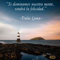 """""""Si dominamos nuestra mente, vendrá la felicidad."""" -Dalai Lama-   #frasescélebres #notas #citas #quote #positivo #redessociales #communitymanager #socialmediamarketing #socialmedia #sm #marketing #enredia"""