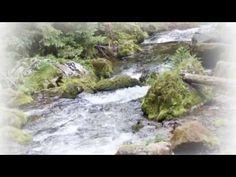 Bernard Ładysz - Upływa szybko życie.wmv - YouTube Youtube, Water, Polish, Outdoor, Gripe Water, Outdoors, Vitreous Enamel, Outdoor Games, The Great Outdoors
