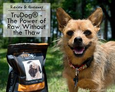 Review & Giveaway: TruDog®: The Power of Raw Without the Thaw #Sponsored @trudoglifestyle Dog Food Reviews, Dog Nutrition, Dog Varieties, Crossed Fingers, Pet Treats, Dog Walking, Cool Cats, Best Dogs, Pup