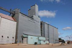 United Farmers Co-op, Bigelow, MN