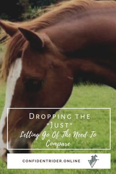 I've spent most of my life living as an over-apologizer. I'm sure that some of you out there will relate. >> Confident Rider - mindset, movement and nervous system awareness for equestrians Emotional Resilience, Training Exercises, Nervous System, Of My Life, Letting Go, Equestrian, Confident, Mindset, Let It Be