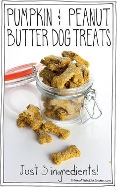 & Peanut Butter Dog Treats (just 3 ingredients! So easy to make. Perfect gift for your furry Ingredient Pumpkin & Peanut Butter Dog Treats! So easy to make. Perfect gift for your furry friends. Dog Biscuit Recipes, Dog Treat Recipes, Healthy Dog Treats, Healthy Recipes, Dog Food Recipes, Doggie Treats, Vegan Dog Biscuit Recipe, Wheat Free Dog Treat Recipe, Doggie Cake