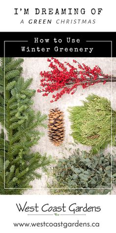 No matter what colour scheme you have in your home at this festive season, winter greenery can act as an accent that adds a dash of freshness. Green Christmas, Country Christmas, All Things Christmas, Christmas Ideas, Christmas Activities, Xmas, Winter Greenhouse, Greenhouse Gardening, Christmas Front Doors