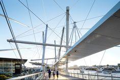 Kurilpa Bridge, Tank Street, Brisbane, Australia - Cox Rayner Architects with Arup #bridge