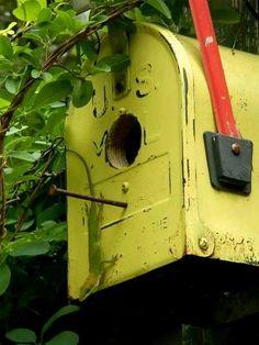 Mailbox adorns the top of the arbor on fleamarketgardening