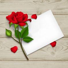 Book Flowers, Flower Boxes, Flower Frame, Flower Backgrounds, Flower Wallpaper, Wallpaper Backgrounds, Happy Birthday Celebration, Birthday Wishes Messages, Birthday Frames