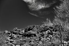 thor_mark  posted a photo:  The story about this image is how sometimes really do have to turn around and pay attention to the things around you. I'd spent some time watching, taking in, and capturing images of the petroglyphs at Signal Hill in Saguaro National Park. But it was on the walk back to the parking area that I just happen to turn around and look up this hillside and see full extent of rock art around this area on the boulders…it was really impressive!  I later converted to black…