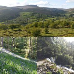 It was lovely today in the #breconbeacons #Wales #Powys http://ift.tt/2qkevl0