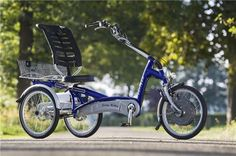 Easy Rider adults tricycle with electro Tricycle Bike, Adult Tricycle, Three Wheel Bicycle, Bicycle Rack, Easy Rider, Electric Bicycle, Cute Art, Motorbikes, Cycling