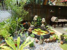 gartenteich bauen miniatur tropisch wasserlilien lotus