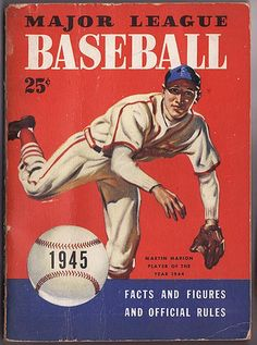Other Baseball Leagues (Negro League, AAGPBL, NGBL etc..)