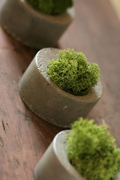 I've always admired these little concrete planters.