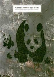 """Résultat de recherche d'images pour """"Moss graffiti"""""""