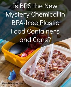 Is BPS the New Mystery Chemical in BPA-free Plastic Food Containers and Cans? - Plastic is just not the way to go, period.