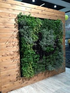 modern  Eco Walls--this would be AWESOME in North! I'll just be over here watering my walls...