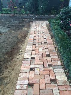 Paved path way in construction