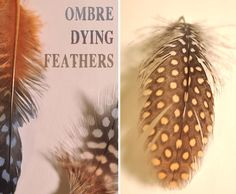 DIY Ombre dyed feather - tutorial