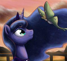 Luna Moth by otakuap