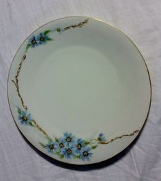 """Hutschenreuther Selb LHS Bavaria Germany Hand Painted Plate 9"""" Blue Flowers #Hutschenreuther"""