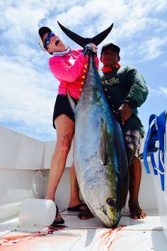 Yellowfin tuna, Paradise fishing lodge, panama Yellowfin Tuna, Saltwater Fishing, Panama, Paradise, Places, Fishing, Sea Angling, Panama Hat, Lugares