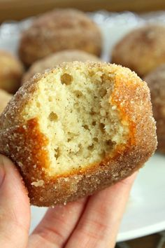 Keto Muffins- The Classic Cinnamon Sugar Donut Style! - Keto Breakfast - Ideas of Keto Breakfast - Keto Muffins- The Classic Cinnamon Sugar Donut Style! Love the low carb lifestyle? These keto muffins are for you. Great for breakfast or as a quick snack Desserts Keto, Keto Snacks, Quick Keto Dessert, Keto Foods, Keto Postres, Keto Donuts, Comida Keto, Cinnamon Sugar Donuts, Cinnamon Muffins