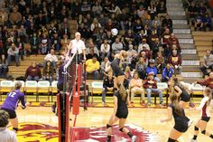Volleyball in Wachs Arena