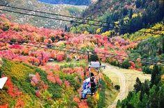 Sundance Scenic Lift Rides in Sundance