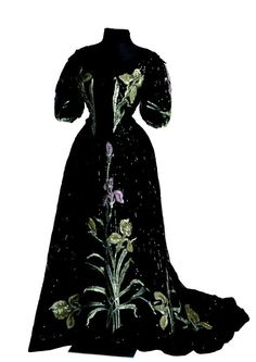 Evening dress ca. 1905-06. Look at that iris! What gorgeous details.