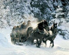 sleigh rides - Yahoo Image Search Results