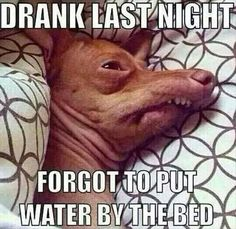 Funny Pictures Of The Day - 56 Pics