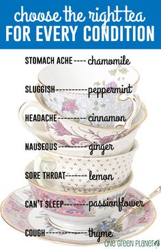 How to Choose the Right Tea for Every Condition http://onegr.pl/1nzTH04 #vegan #homeopathic #remedy