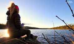 Lillsjön fishing #fisketur #fishing #fishingtrip  #Lillsjön #Myckelgensjö #sweden #lake #norrland #outdoors  #örnsköldsvik #naturelovers #gapahuk #cabin #lapphund #travel