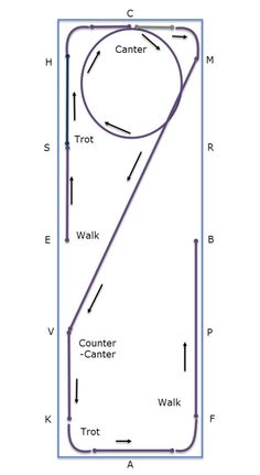 Transition w-t-c-counter canter