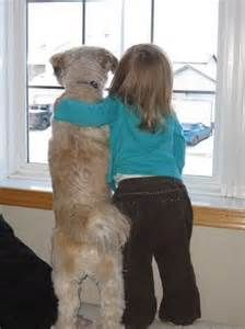 babies and toddlers with dogs - Bing Images