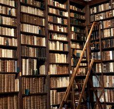 Slytherin, Hogwarts, Estilo Dark, Dr Reid, College Aesthetic, The Secret History, Brown Aesthetic, Stargazer, How To Stay Awake