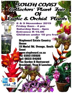 This year Our Orchid and Exotic Plant Fair 2019 will be held at Stephward Estate Uvongo Margate, South Coast, South Africa on Friday 8 November 8.30am till 4.30pm Saturday 9 November 8.30am till 4.30pm  Entrance is R15 for visitors, children under 10years free. Tea/Coffees, Lunches ,Drinks and Cash Bar services will be available in the Tea Garden or Pooldeck. Rare Plants, Exotic Plants, Orchid Plants, Orchids, Country Estate, South Africa, Wedding Venues, Coast, Tea
