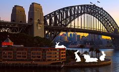Giant Rabbits Invade Sydney Harbour by Amanda Parer