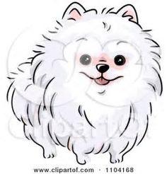 103 melhores imagens de Lulu | Cães, Animais e Spitz alemão