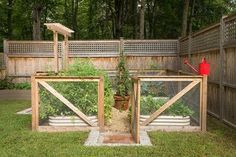 Lattice serves to accentuate the top of this solid privacy fence. When not on its own, lattice fencing works well with almost every other kind of fence. Farmhouse Landscaping, Farmhouse Garden, Backyard Landscaping, Garden Fencing, Lawn And Garden, Farm Gardens, Outdoor Gardens, Fenced Vegetable Garden, Backyard Renovations