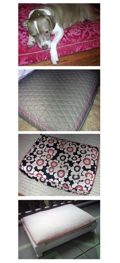 Custom dog beds - indoor and outdoor. That's my pup Copper on her mohair bed...