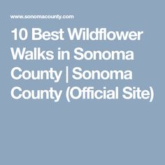 10 Best Wildflower Walks in Sonoma County   Sonoma County (Official Site)