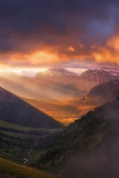 Light of the wild by Nagesh Mahadev on 500px