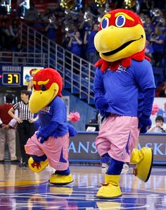 Jayhawks for a Cure