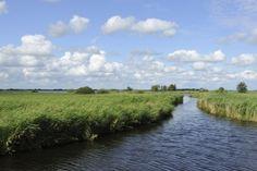 Weerribben-Wieden National Parc, The Netherlands. Former peatbog