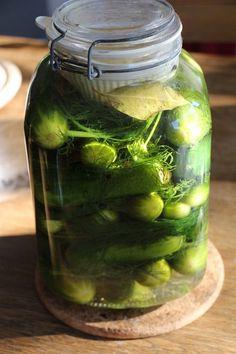 Schnelle eingelegte Gurken nach russischer Art, ein schönes Rezept aus der Kategorie Gemüse. Bewertungen: 12. Durchschnitt: Ø 4,1.
