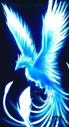 Beautiful Fantasy Art, Dark Fantasy Art, Fantasy Artwork, Phoenix Artwork, Phoenix Wallpaper, Cute Fantasy Creatures, Mythical Creatures Art, Dark Creatures, Mystical Animals